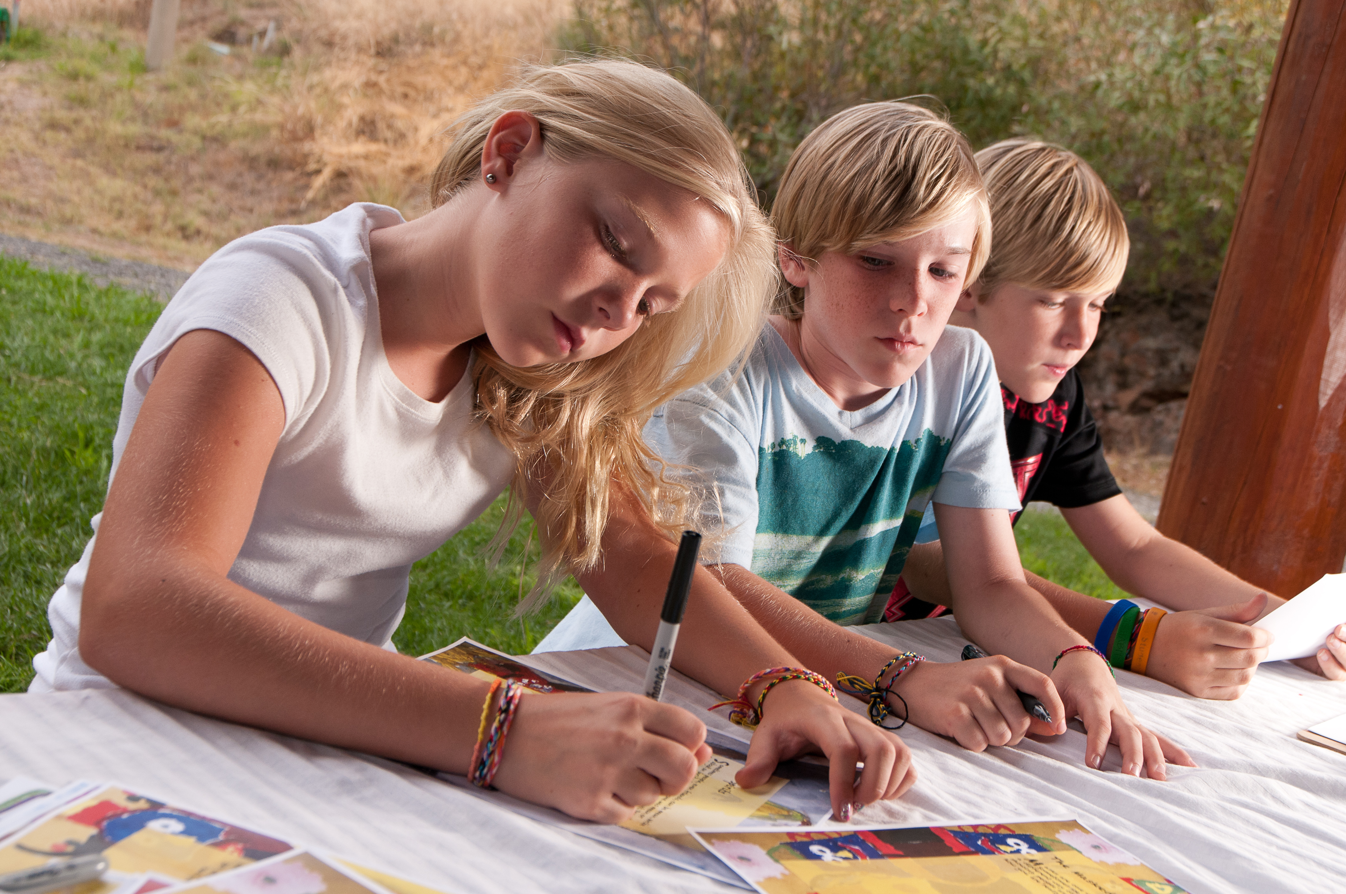 Journaling Ideas For Well Siblings