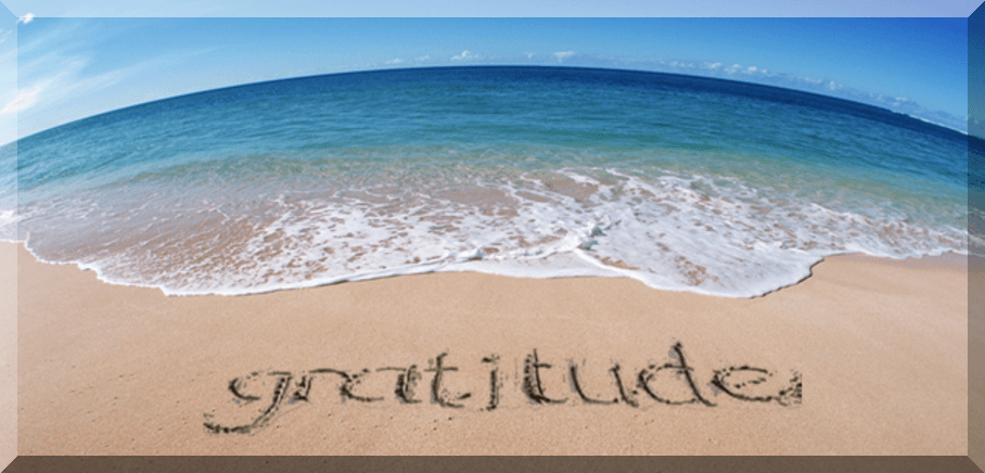 From Attitude to Gratitude