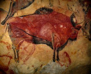 bison cave drawings